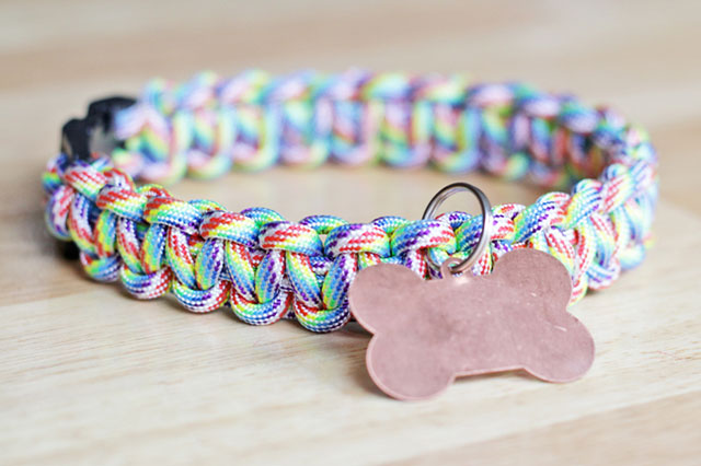 collier-tresse-chat